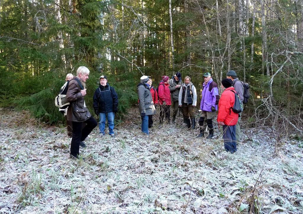 På frostnupen mark
